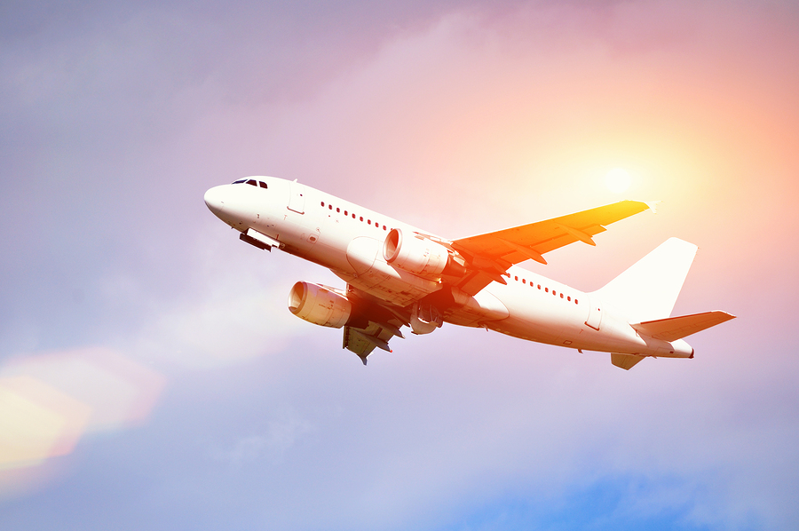 Keep These Things In Mind When Flying Commercial With Your ESA
