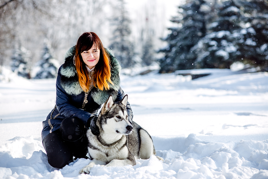 Keep Your Dog Active & Healthy During Cold Months