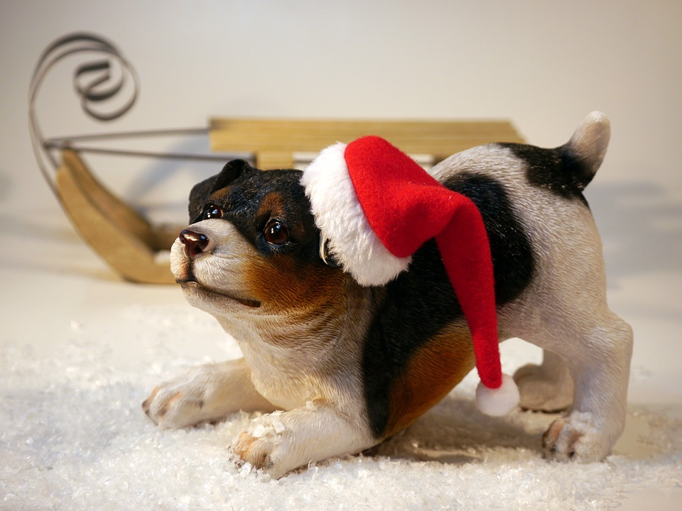 Keep Your Pet and Your Decorations Safe This Holiday Season