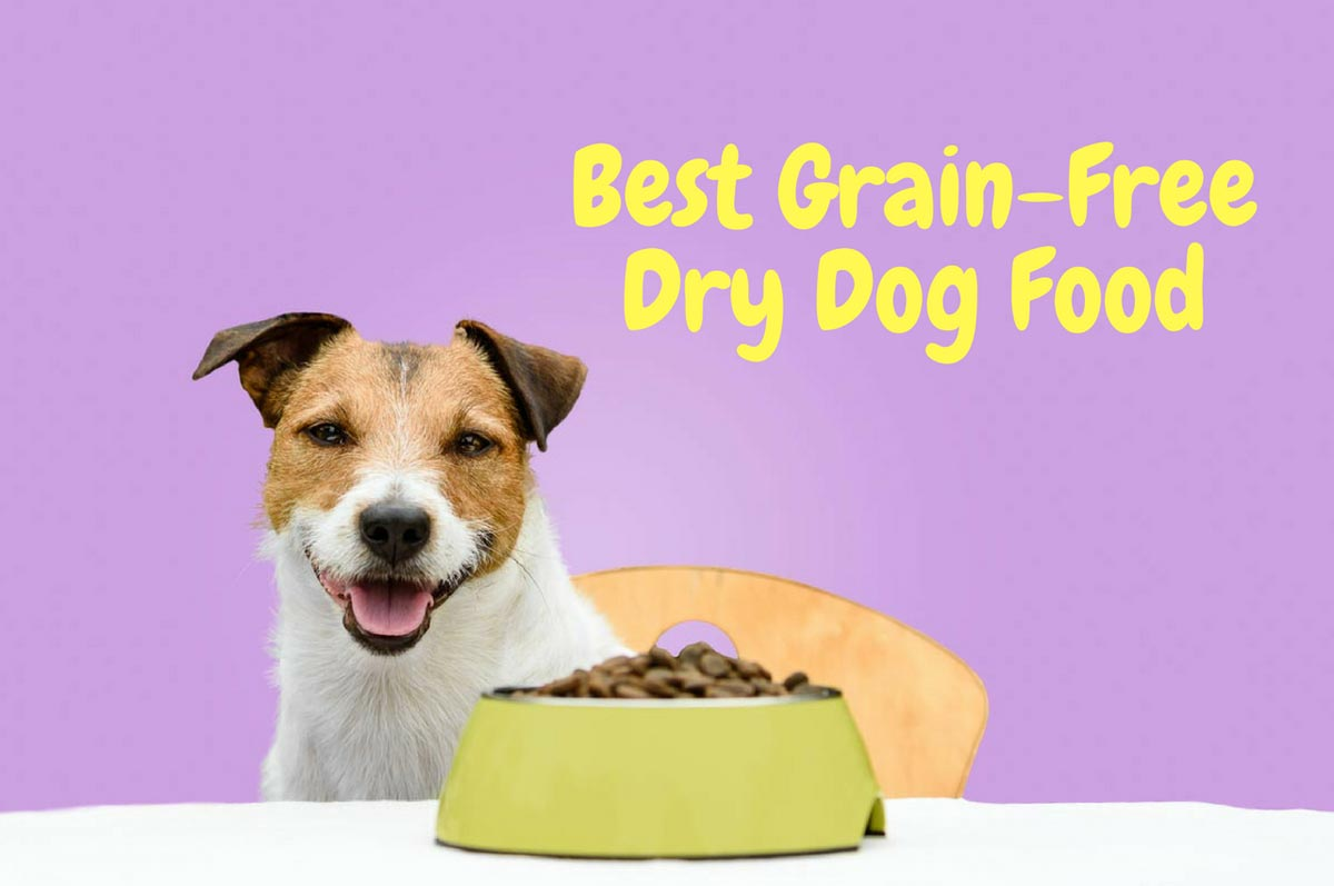 Quick Answer: Grain-Free Dog Food Any Pup Will Love