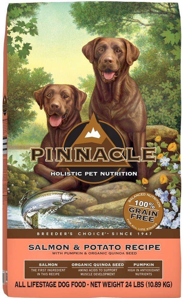 picture of dog food
