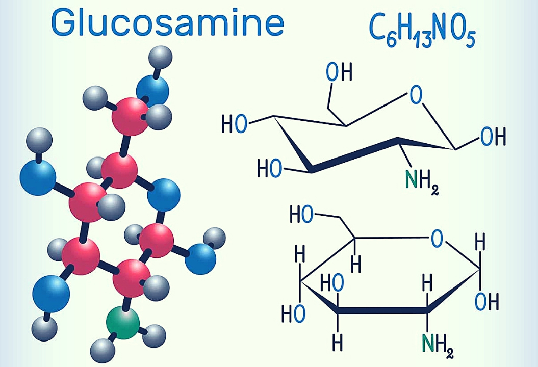 Glucosamine Compound