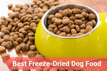 High Quality Freeze-Dried Dog Food Sold Online