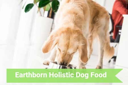 Ultimate Guide: Earthborn Holistic Canine Food