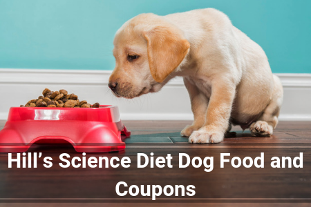 2019 Review of Hill's Science Diet Dog Food