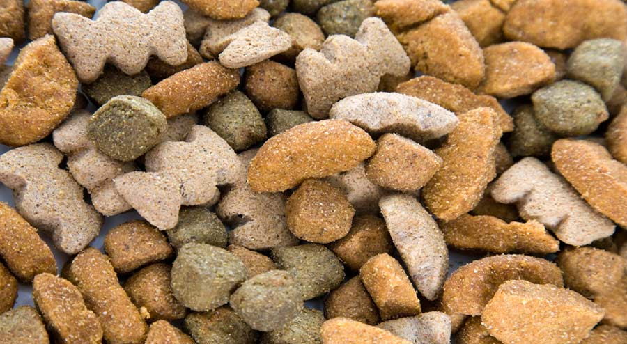 Ingredients and Types of Dog Foods