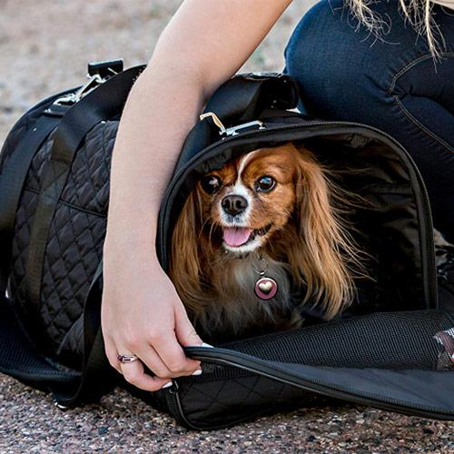 Multipet Pet Voyage