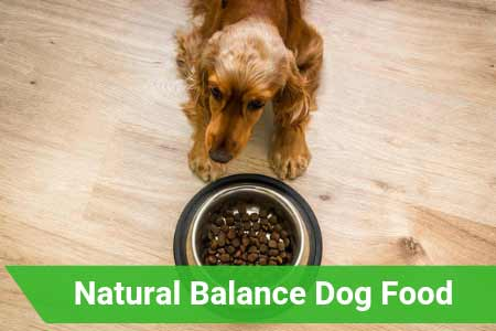 How Does Natural Balance Compare To Other Foods?