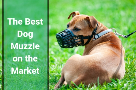 Top Dog Muzzles Sold In 2019