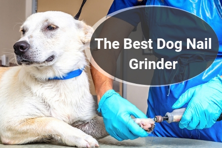 Top Rated Nail Grinders For Dogs