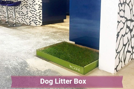 Let Your Canine Use THEIR Indoor Bathroom!