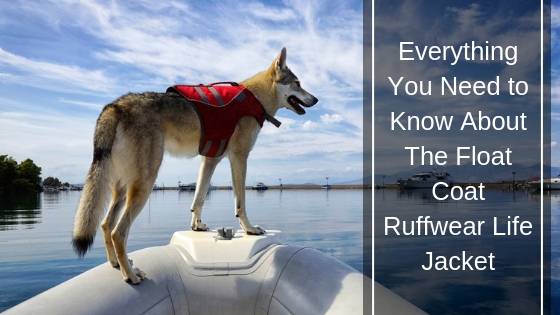 The Float Coat Ruffwear Life Jacket