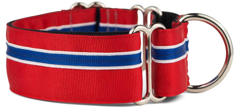 If It Barks Martingale Collar