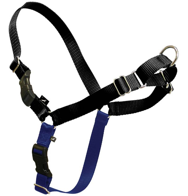 Premier ECO Easy Walk Harness