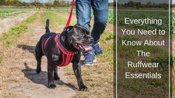 Ruffwear Essentials