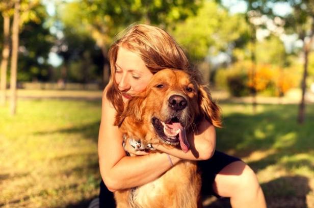 dog comforting human