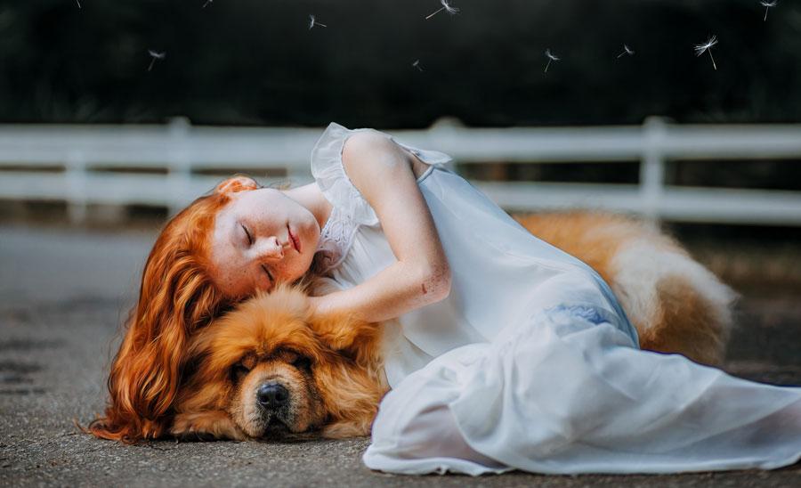 How do I get a Service Dog for Depression