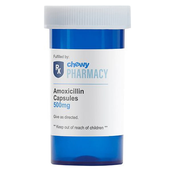 Amoxicillin (Generic) Capsules for Dogs & Cats