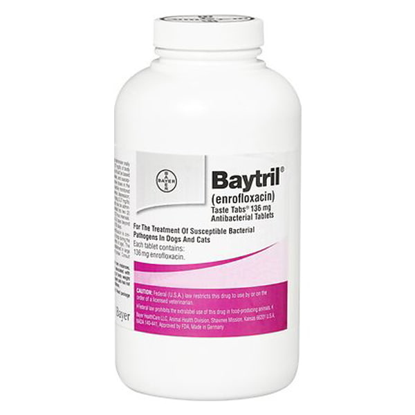 Baytril (Enrofloxacin) Chewable Tablets for Dogs & Cats