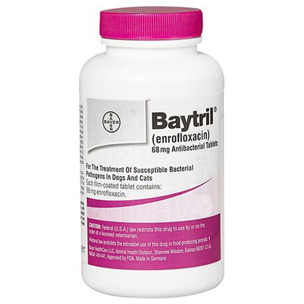 Baytril (Enrofloxacin) Tablets for Dogs & Cats