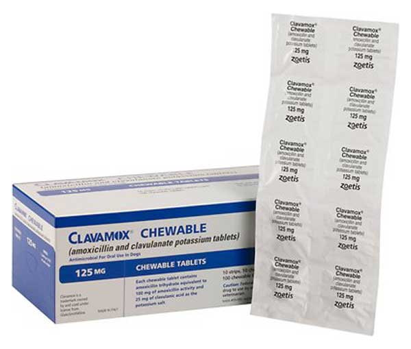 Clavamox (Amoxicillin  Clavulanate Potassium) Chewable Tablets for Dogs & Cats
