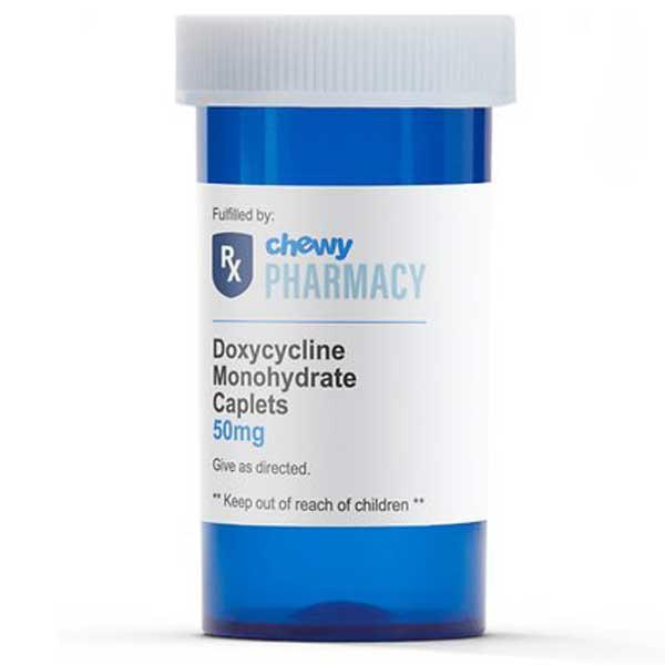 Doxycycline Monohydrate (Generic)